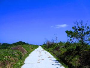 宝島の城之山牧場の道