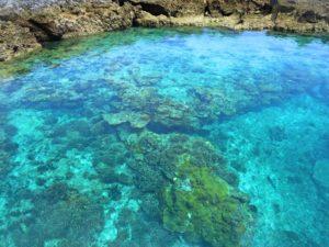 宝島の大間海岸の珊瑚礁